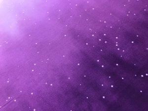 画像2: 9月:お月見シーサー