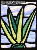 アロエのステンドグラスキルトタペストリー20_25 パターン